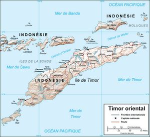 Carte relief Timor